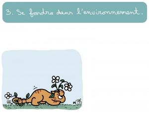 grand chatsseur3