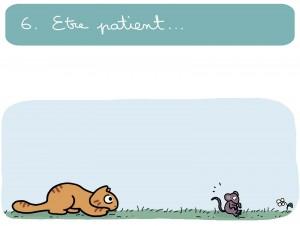 grand chatsseur6