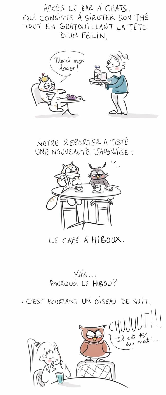 hiboux1