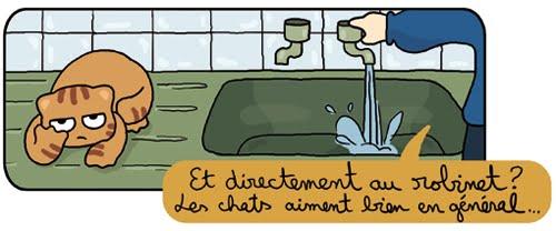 moumoute eau3