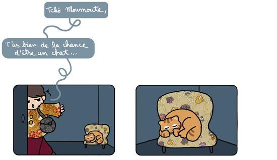 vie de chat3