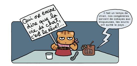 vie de chat5